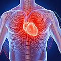 Remede pour guerir la palpitation du coeur