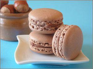 macarons chocolat au lait et noisettes (38)
