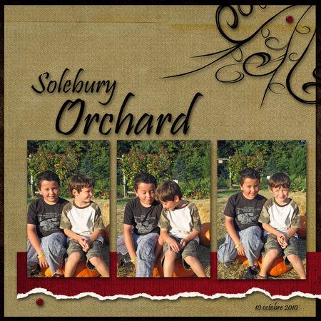 soleburyorchard