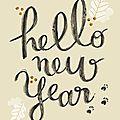 Qui dit nouvelle année ...