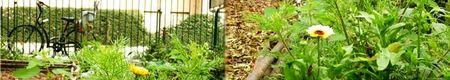 vei_jardins