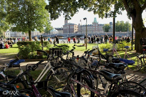 Cyklar utanför Rosenbad
