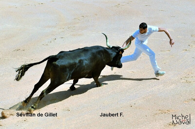 ISTRES 04