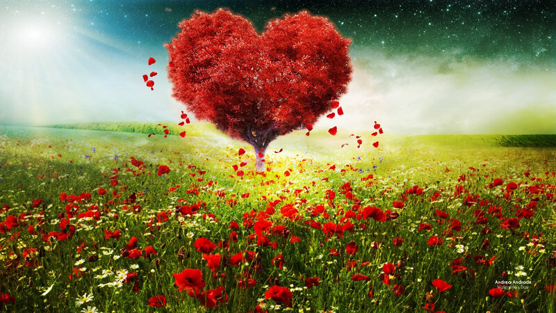 219-2199429_love-heart-beautiful-wallpapers-happy-valentines-day-nature