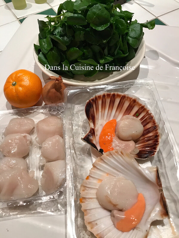 Coquille Saint Jacques 2