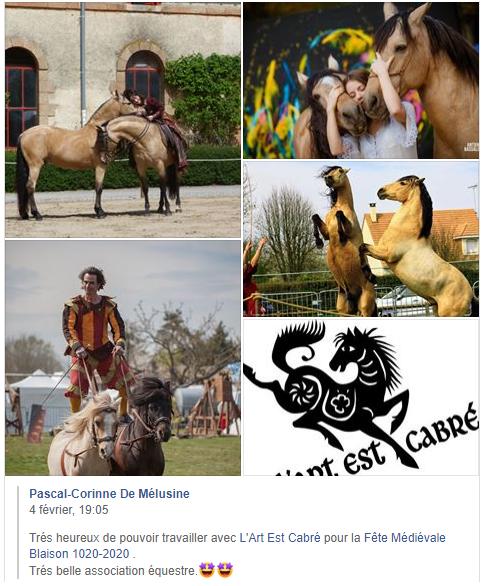 issu facebook1