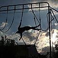 Cirque en scène © Didier Goudal