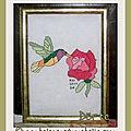 Le colibri de dörte, 48e inscrite