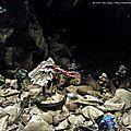 Massacre de Istvaan III 9