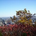 Mont royal 21oct 055