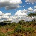Parc d'Amboseli