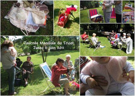 2011 06 11 Journée mondiale du tricot