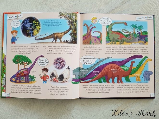 POUR LES ENFANTS : LES DINOSAURES - FLEURUS