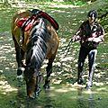balade equestre gastronomique à La Lucerne d'Outremer (61)