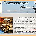 Carcassonne - présentation des cartels 2019
