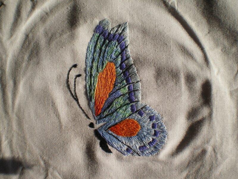 Papillon qui s'envole