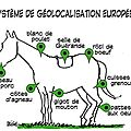 europe findus cheval humour