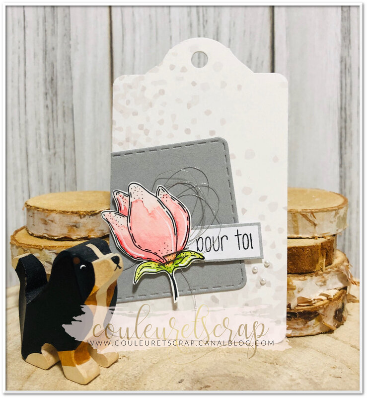 Couleuretscrap_carte_anniversaire_Little_sketch_étiquette_pourtoi