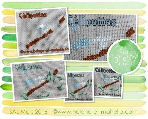 célinettes_salmar16_col2