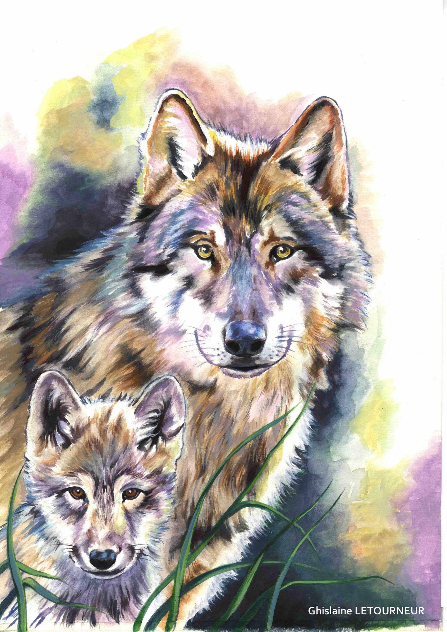 Peinture loup et louveteau - Ghislaine Letourneur BD