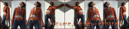 bonome__le_jeu__change