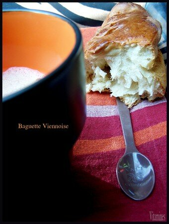 baguetteviennoise1