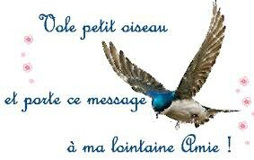message oiseau