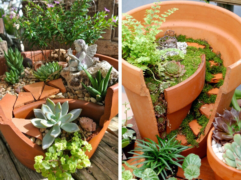 mini-jardin-1