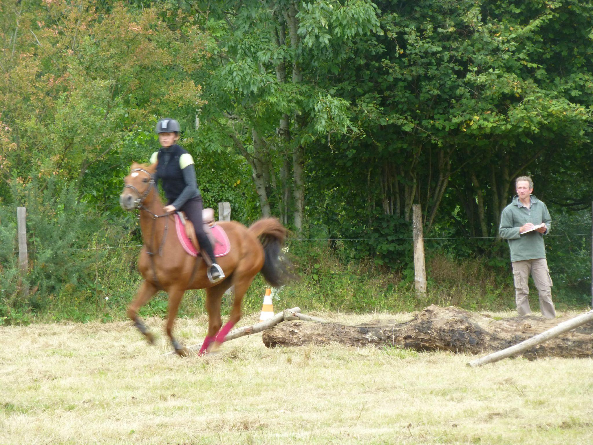 Jeux équestres manchots - parcours de pleine nature après-midi (142)