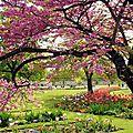 2013030521160_C-est-le-printemps