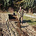 Epandage de compost sur les futures lignes de légumes exigeants