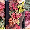 Fleur-foret-automne-1