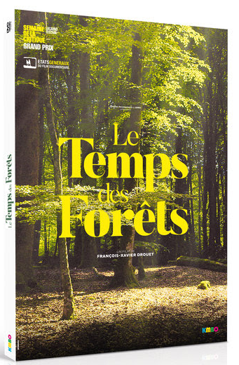 temps foret