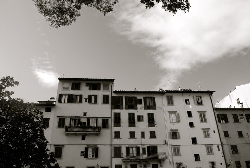 Piazza_Brunelleschi___Version_3