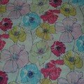 poppy roses multicolore