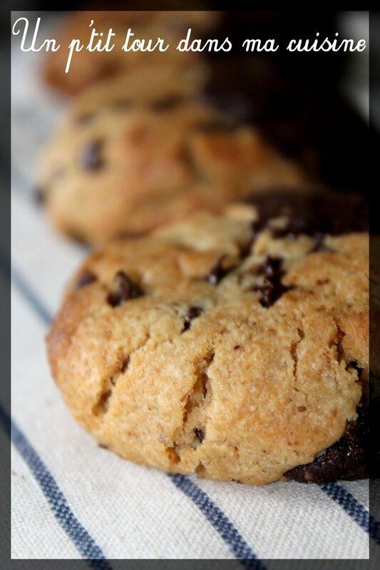 Biscuits bi-goût3