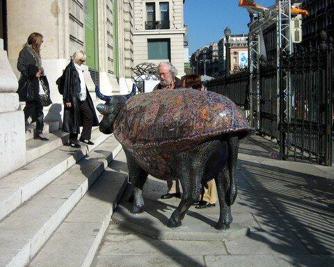 Vache tortue