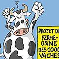 Référé contre le permis de construire de la ferme des 1000 vaches