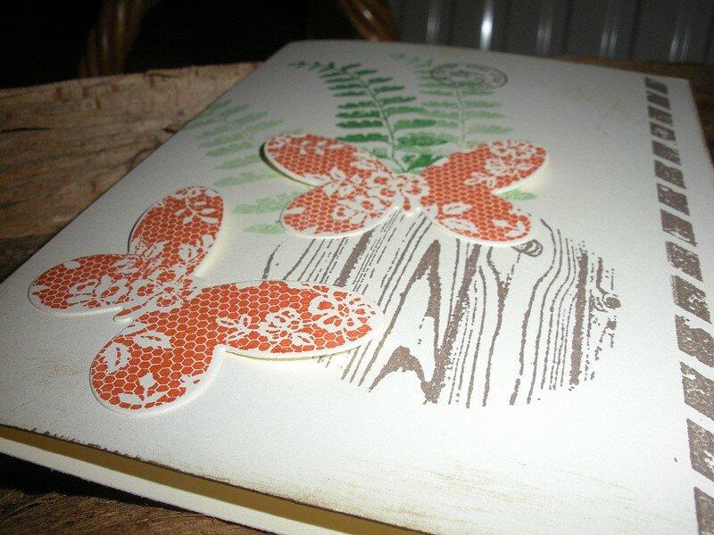 Papillons orange (2)