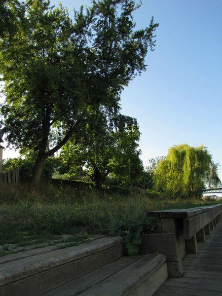 Marne18
