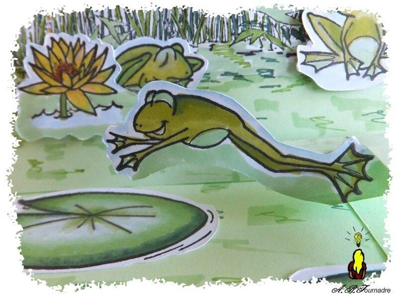 ART 2017 05 mare aux grenouilles 6