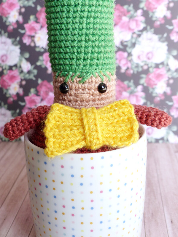 cactus-crochet-livre-caro-tricote-my-sweet-home-editions-eyrolles-04