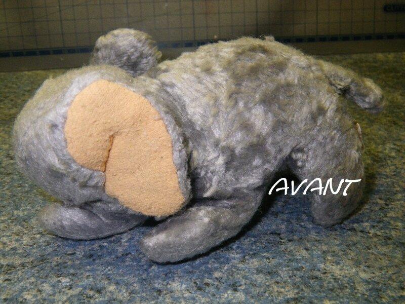 Bertrand l'éléphant âgé de 25 ans