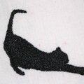 L'ombre du chat...