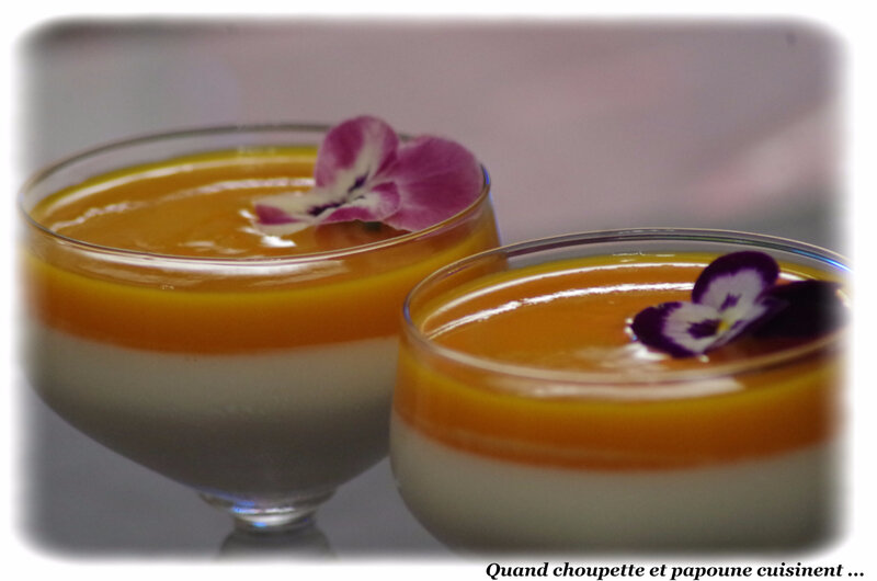 panna cotta au jus de gingembre et coulis de mangue-1464