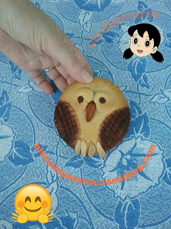 BISCUITS CHOUETTES 152