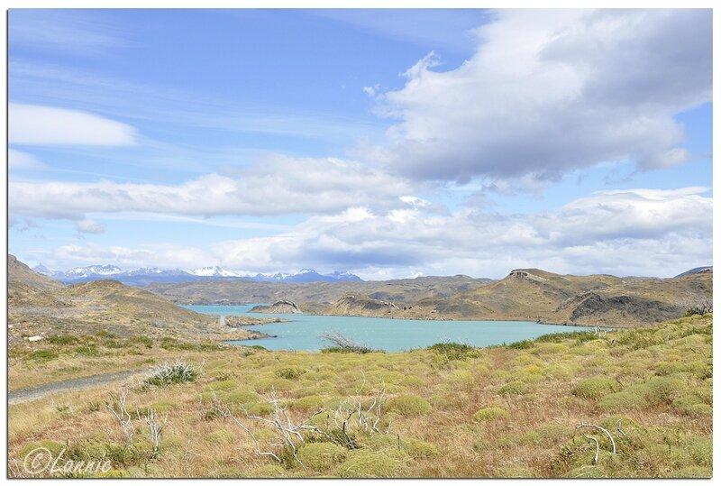 _Argentine_384_Chili_Torres_del_Paine_lago_Pehoe
