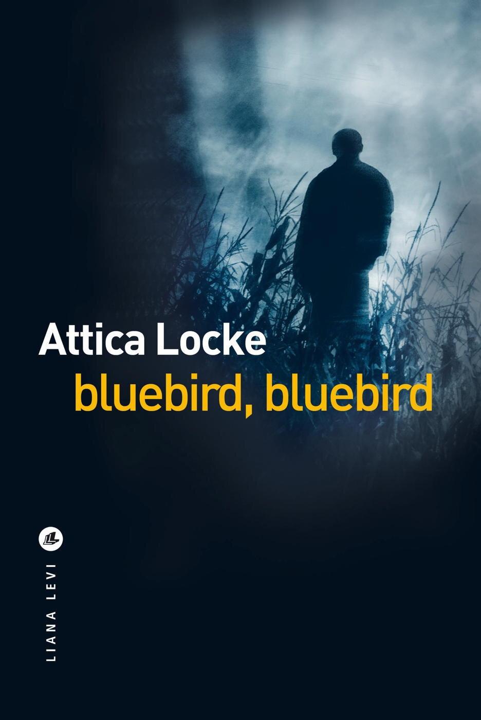 Bluebird, Bbluebird; un vrai polar d'atmosphère qui nous plonge dans  l'Amérique d'aujourd'hui - Baz'art : Des films, des livres...