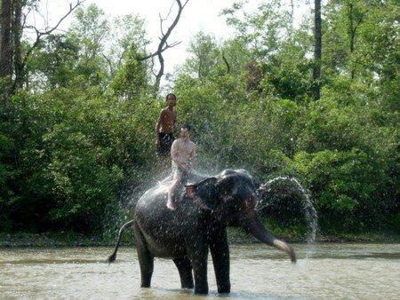 Bath_of_Elephant