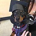 Diplômée !!!!